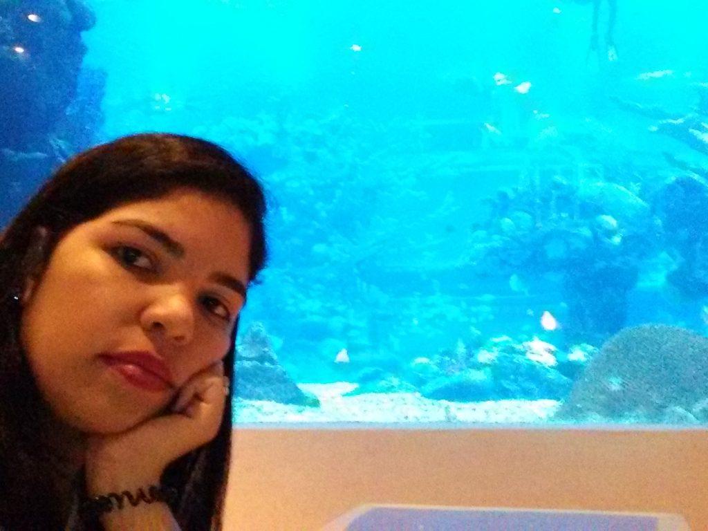 Ambiente interno do restaurante com aquário imenso e lindo